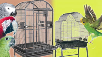 Aviaries & cages