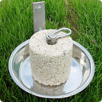Grit stone holder - stainless steel
