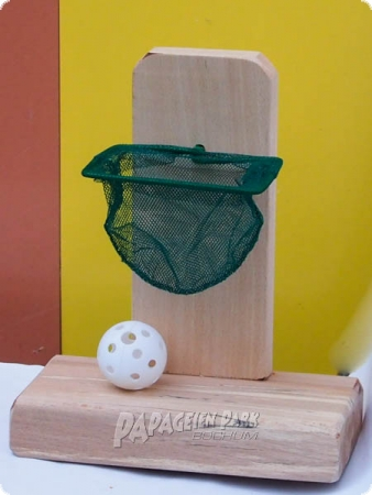 Nature line intelligence Basketball Hoop