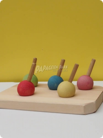 Nature line intelligence toy Five lollies II