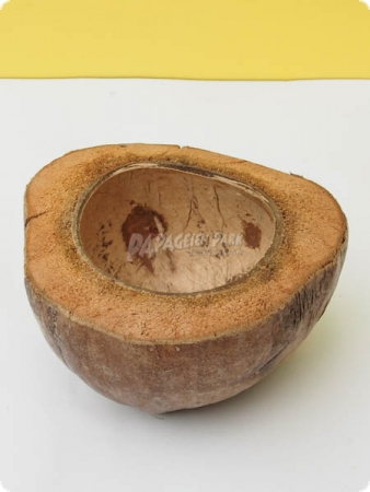 1/2 coconut shell
