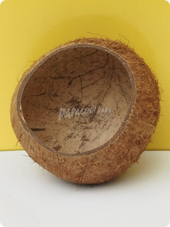 3/4 coconut shell cup