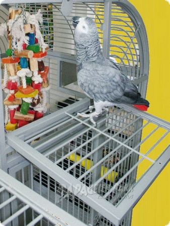 Parrot Aviary J4700 - light gray