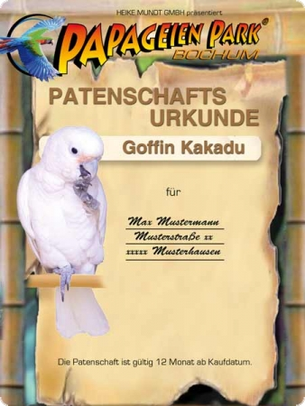 Sponsorship for Goffin cockatoo 12 months
