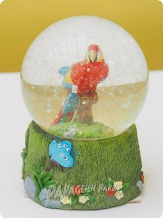 Snow globe with macaw