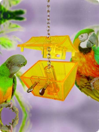 Intelligencetoy Parrots Treasure