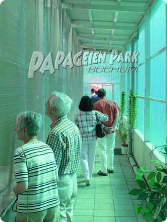 Parrot Park exclusively experience guided tour
