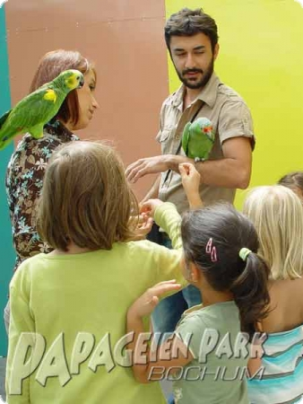 Visit in the flight aviaries & parrots petting