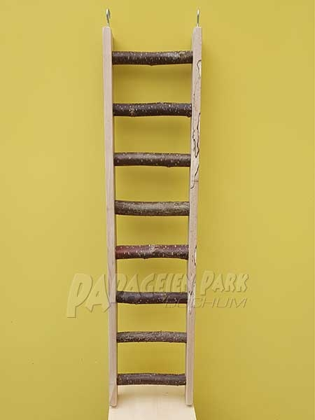 Beech ladder with natural sprouts 80 cm