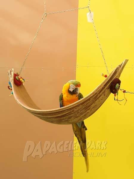 Coconut leaf swing