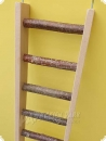 Beech ladder  with natural sprouts 60 cm